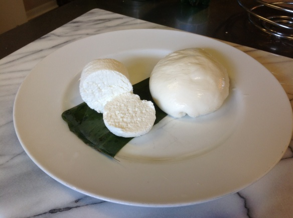 Fresh Homemade Goat Cheese and Mozzarella are easier than you might think!